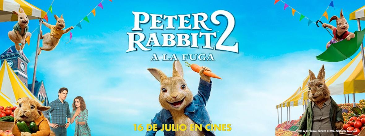 G - PETER RABBIT